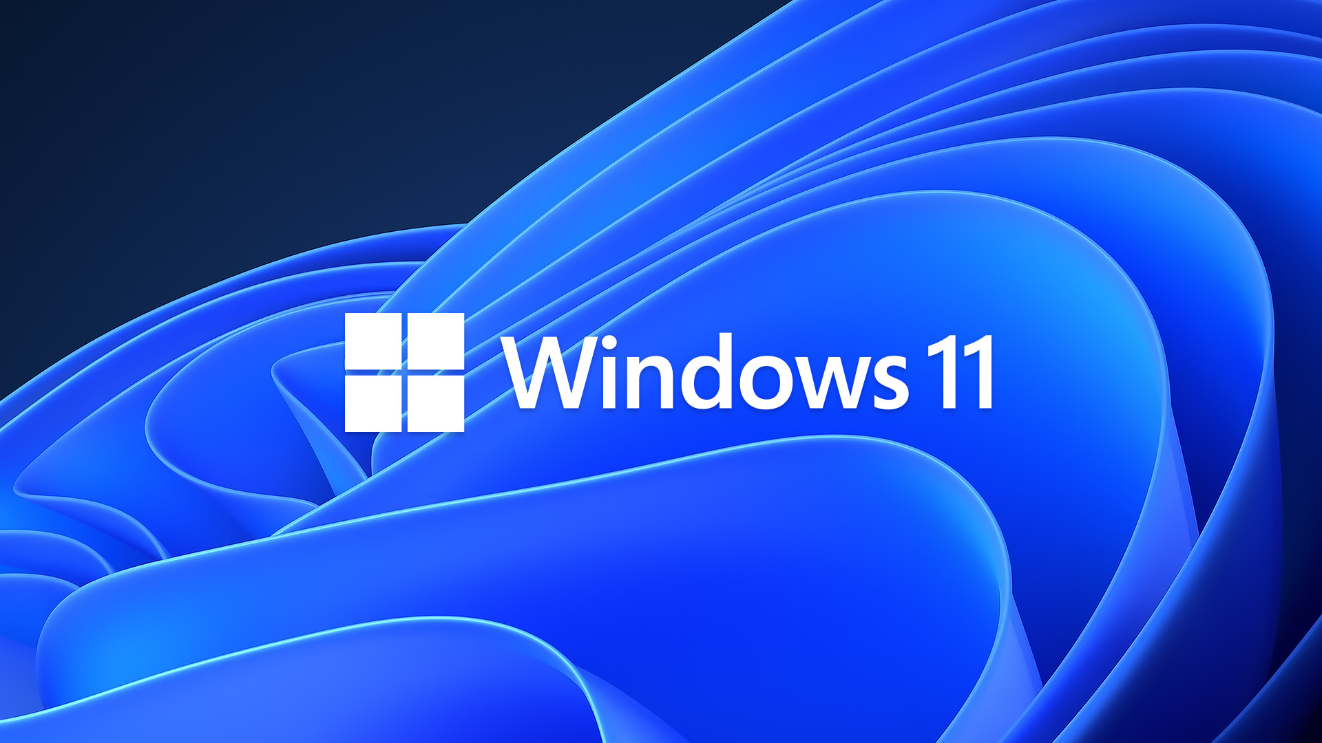 Windows 11 Timeline for Your Business